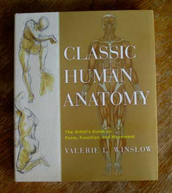 Human Anatomy Look Ma Those Drawings Got No Skin Mockingbirds
