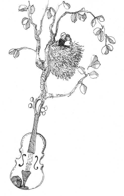 Fiddle Nest