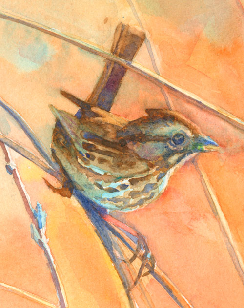 Sparrow detail