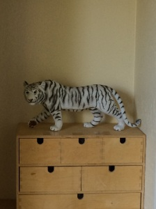 Mountain lions lurk in our new community, but white tigers (far safer) prowl the new studio.
