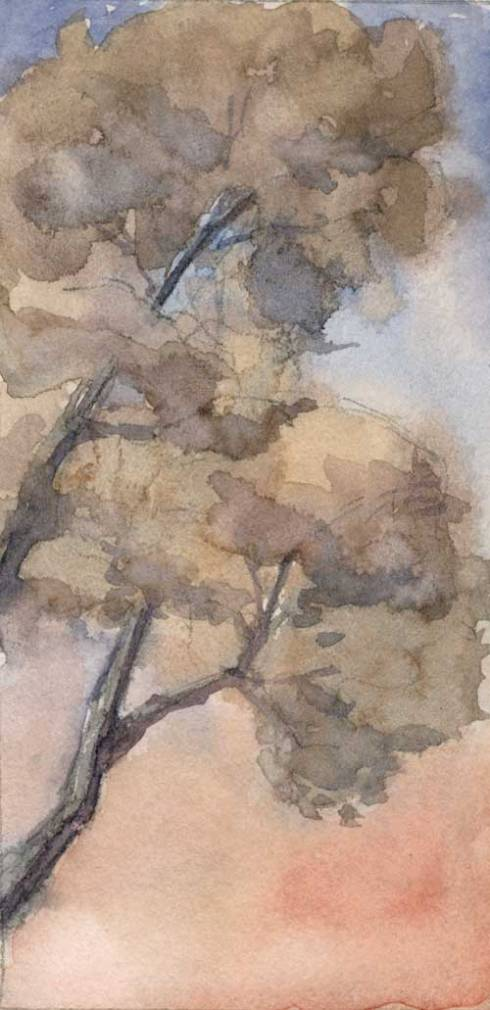 """Winter trees 3"""" x 6"""" watercolor in Strathmore Mixed Media Journal"""