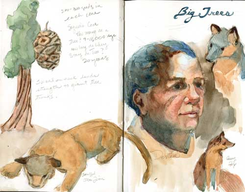 Spread from AnimalScapes sketchbook at California Big Trees State Park Stilman& Birn Zeta Series Sketchbook