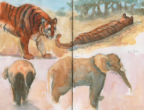 Tigers and elephants at PAWS Watercolor in Stilman & Birn Zeta Series