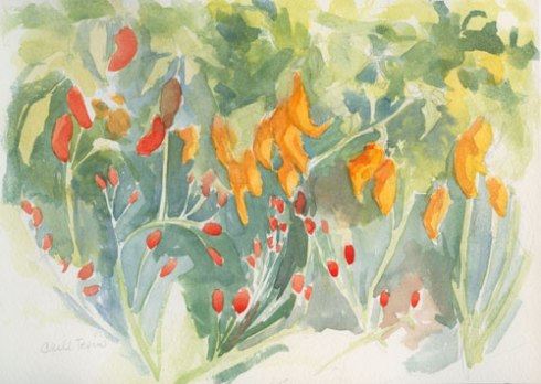 Pepper patch Watercolor sketch in Cachet watercolor sketchbook