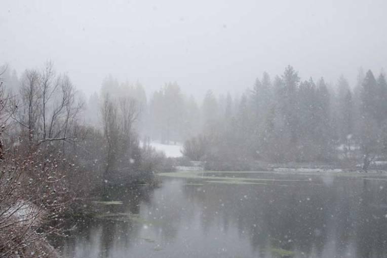 snow in grief
